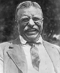 Theodore Roosevelt 256px-Theodore_Roosevelt_laughing.jpg