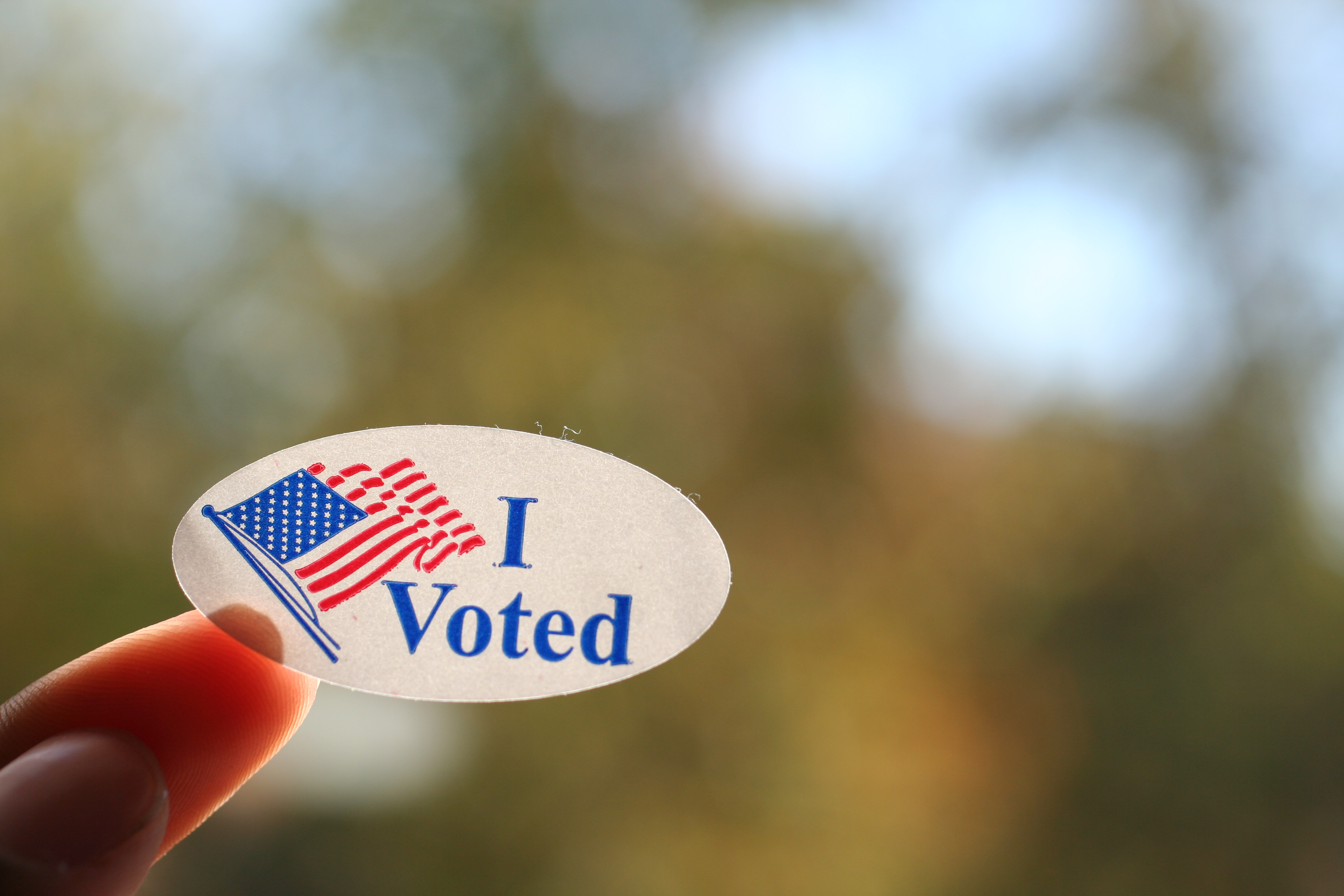 Louisiana voters are heading to the polls And their I Voted stickers are showing up on the popular auction site ebay The sticker features artwork by