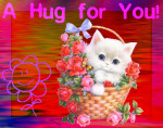 Hug Kitty.flickrCC.joyousjoym